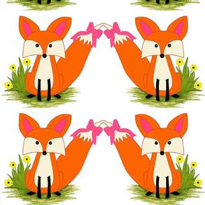 fox-ed