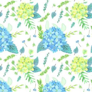 Hydrangeas Garden