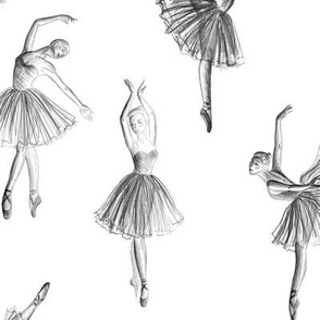 Ballerinas drawing on white (big scale)