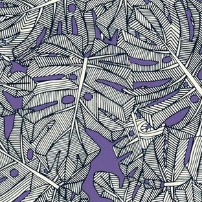 monstera leaves purple