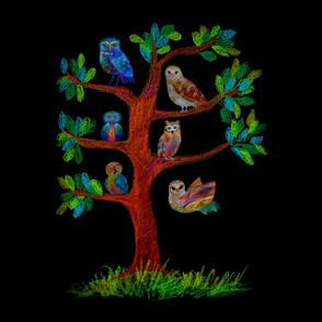 owl - barn owl - hawk owl - owlet - snowy owl