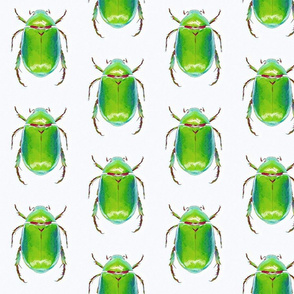 Scampering Scarabs
