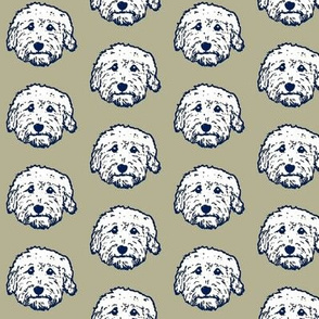 Goldendoodle faces in white and gray - adorable doodle dogs