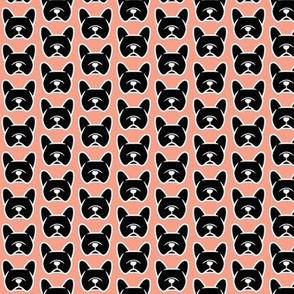 Frenchie dogs in black and blush!