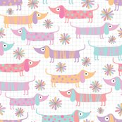 Rdachshunds_and_daisies_in_white_300dpi_shop_thumb