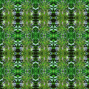 Alien leaf