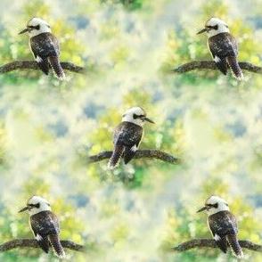 Kookaburra, Photographic, Green