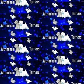 altrincham stars