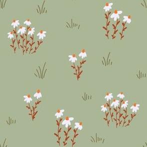 coneflower meadow - sage