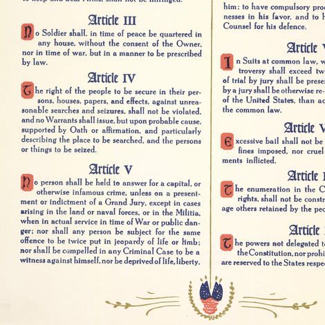 Bill of Rights // Large fabric by thinlinetextiles on Spoonflower - custom fabric