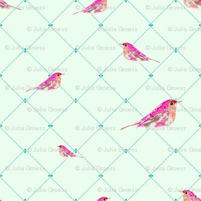 Bella Bird