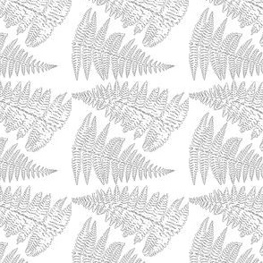 Fern Outline Ferns