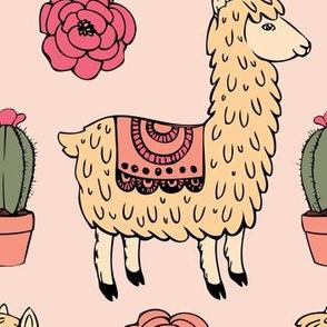 Desert llamas
