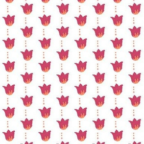 Raspberry Red Orange Tulips - Small