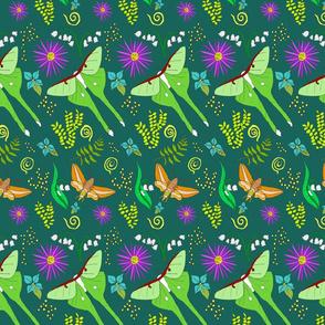 Luna Moths Woodland