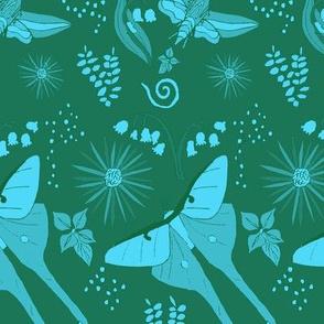 Moths at Midnight