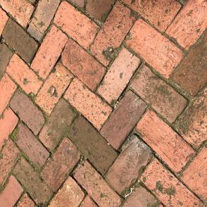 Savannah Brick
