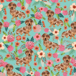 doxie floral dapple chocolate dachshund dog breed fabric mint