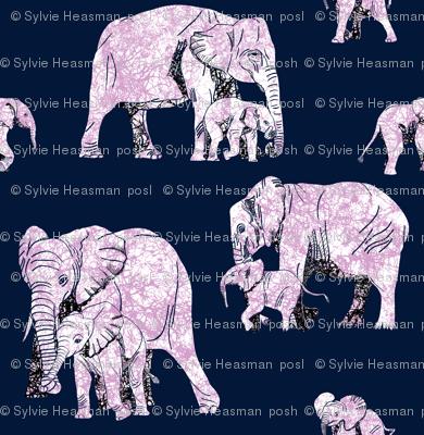 Elephant Love - Biggest