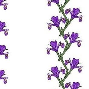 Purple Iris Garden Trellis Stripe