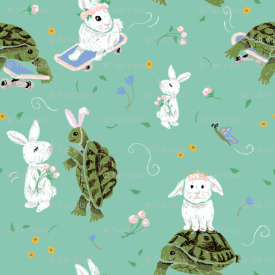 Turtle and the Rabbit