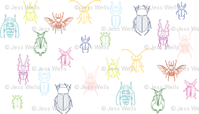 multi-color beetles on white