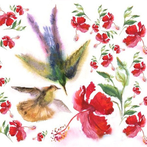 Hummerbirds and hibiscus flowers