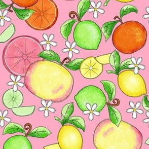 Citrus Fruit Pink Large