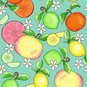 Citrus Fruit Teal Large