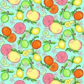 Citrus Fruit Turquoise Small