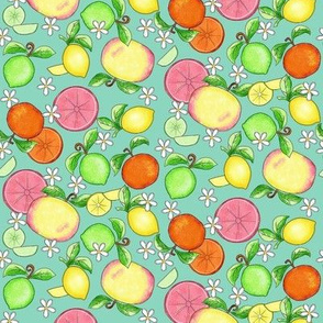 Citrus Fruit Teal Small