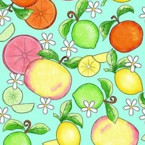 Citrus Fruit Turquoise Large