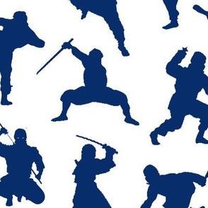 Blue Ninjas // Large