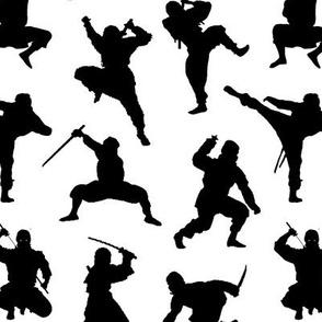 Ninjas // Small