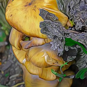 Mushroom Frogs-ed
