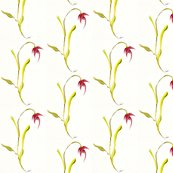 Rwatercolors-flowers-flowing-flower-pink_ed_shop_thumb