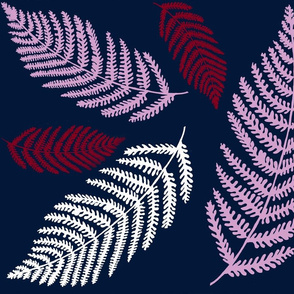 Midnight ferns