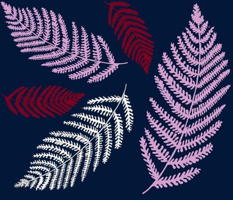 Rrmidnight-ferns_contest174236preview