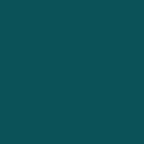 Solid Dark Teal