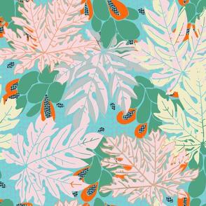 papayas [#9, petal pink combo]