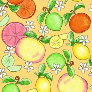 Citrus Fruit Yellow Large