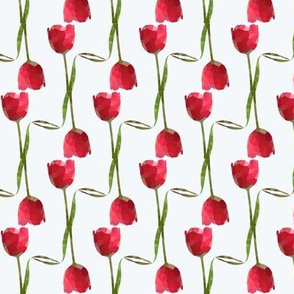 Red Tulips-White