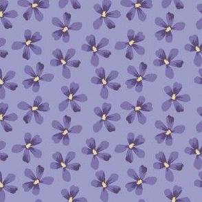 Violet Floral Small Geranium Blooms