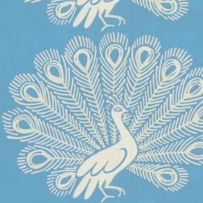 peacock (Chambray blue)