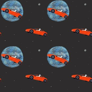Starman // car in space