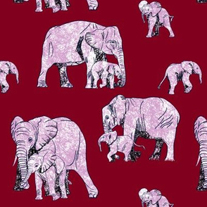 Elephant Love - On Burgundy