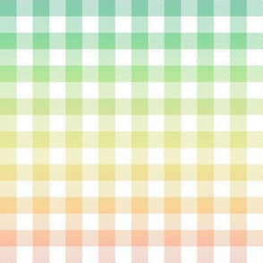pastel rainbow gingham