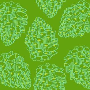 cone line_asparagus