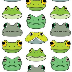 assorted frogs