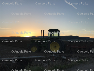 John deer at sunset in the field